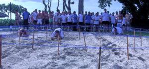 Lottomatica Team Building Bali